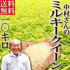 おまけ付き 中村さんのミルキークイーン 10キロ 高知産 生産者限定 令和2年産 送料無料 単年度産100% 精米 お米 白米 ご飯 ごはん アミロース おにぎり chokuhan