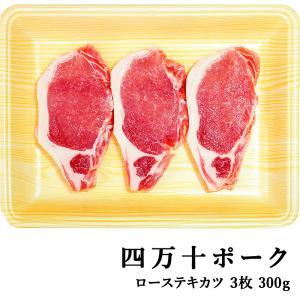 四万十ポーク 窪川ポーク ロース・テキカツ 3枚 約300g 高知産 豚肉 ポーク ステーキ 高級 ギフト プレゼント お取り寄せ 産地直送 お歳暮 お祝い (200023) chokuhan