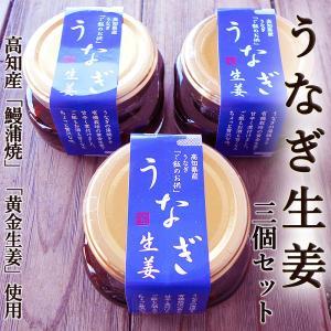 うなぎ生姜 80g×3個セット 高知産鰻と高知産黄金生姜使用 ご飯のお供、酒の肴に ギフト|chokuhan