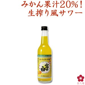 富士白ミカンチュウハイの素600ml|chokyuan