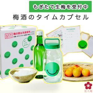 梅酒 手作り セット 瓶 梅酒用の梅|chokyuan