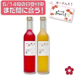 梅シロップ 梅ジュース ギフトの商品画像|ナビ