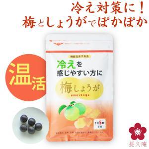 しょうが ショウガオール あさイチ サプリ 温活 梅肉エキス 梅しょうが|chokyuan