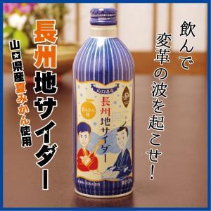 長州地サイダー ボトル 夏みかん 490ml 果汁3% 山口県 お土産 人気|choshuen-y