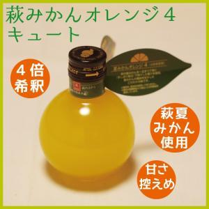 夏みかんオレンジ4キュート 180ml 4倍希釈 山口 萩|choshuen-y