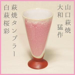 山口萩焼 萩焼ビアグラス タンブラー 白萩桜彩A 大和猛作 化粧箱付き|choshuen-y