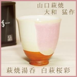山口萩焼 萩焼湯呑 茶彩「白萩桜彩」 大和猛作 化粧箱付き|choshuen-y