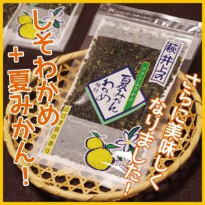 夏みかんわかめ70g 萩・井上 人気|choshuen-y