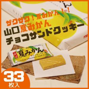 夏みかんチョコサンドクッキー 33枚入り 山口 お土産 人気|choshuen-y