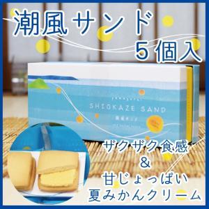 潮風サンド 5個入り 山口 夏みかん 人気|choshuen-y