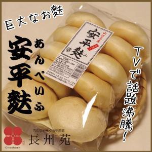 安平麩 山口名産 手作り 10個入り|choshuen-y
