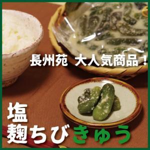 塩麹ちびきゅう|choshuen-y