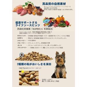 ブルーバッファロー ライフプロテクションフォーミュラ 高齢犬用 (超)小型犬用 チキン&玄米 1.75kg|chouchou-place|02