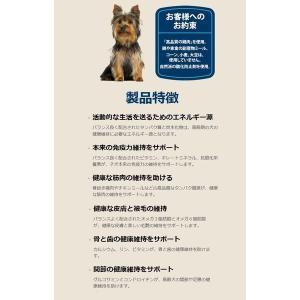 ブルーバッファロー ライフプロテクションフォーミュラ 高齢犬用 (超)小型犬用 チキン&玄米 1.75kg|chouchou-place|03
