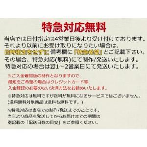 280ml【名入れ彫刻】サーモス真空断熱オフィスマグ/JCP-280|choukokudou|03