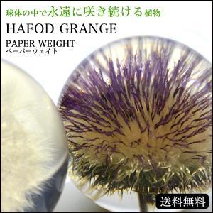 Hafod Grange ハフォドグレンジ PAPER WEIGHT ペーパーウェイト(宅)|chronoworldjapan
