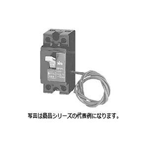 日東工業 CB32X 2P 20A 安全ブレーカ