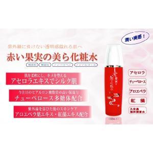 自然派アセロラ化粧品 赤い果実の美ら化粧水