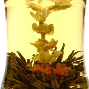 工芸茶 一盞千金|chuukanotobira