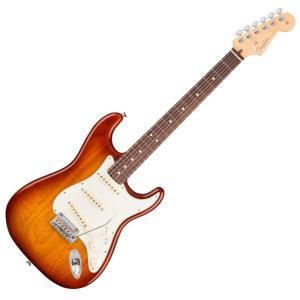 Fender American Professional Stratocaster SSB RW エ...