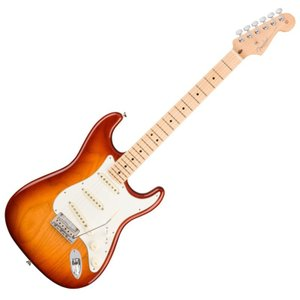 Fender American Professional Stratocaster SSB MN エ...