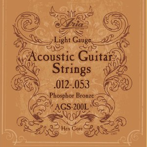 ARIA AGS-200L アコースティックギター弦