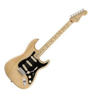 Fender American Professional Stratocaster MN NAT エ...