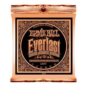 ERNIE BALL 2548 Everlast Coated PHOSPHOR BRONZE LIGHT アコースティックギター弦