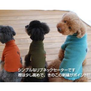犬の服 秋冬 新作 マッシュルームリブタートルセーター ブラック DOG SIGN ドッグサイン 洋服 ドッグウェア|ciera|04