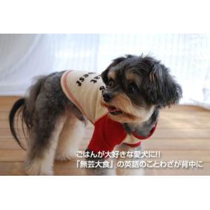 犬の服 春 夏 フロッキーラグランTシャツ レッド×ベージュ DOG SIGN ドッグサイン 国産 洋服 ドッグウェア ciera 04