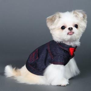 犬の服 秋 冬 GODPIVA FAKEリボンデニムシャツ ブラック ゴッドピヴァ 洋服 ドッグウェア|ciera|04