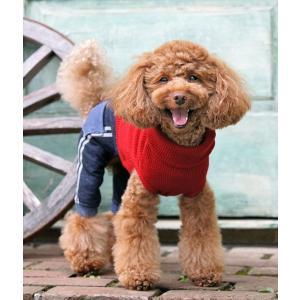犬の服 秋 冬 ラインデニムパンツ 犬と生活 洋服 ドッグウェア ciera 04