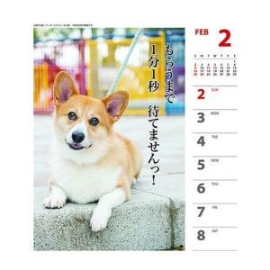コーギー 犬川柳 週めくり カレンダー 2020 年 壁掛け & 卓上 スケジュール いぬ APJ 150×180mm 動物 写真 書き込み|cinemacollection|03