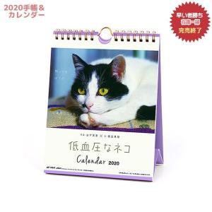 カレンダー2020年 低血圧なネコ 卓上 ポストカード仕様 ねこ APJ 150×190mm 動物 写真|cinemacollection