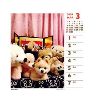 犬カレンダー 2020年 俊介 ポメラニアン 週めくりミニ いぬ 卓上 スケジュール 107×129mm 動物 写真 書き込み インテリア 2020 Calendar|cinemacollection|03