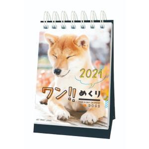 2021年 カレンダー ワン!!めくり 日めくり 卓上 いぬ APJ|キャラクターのシネマコレクション