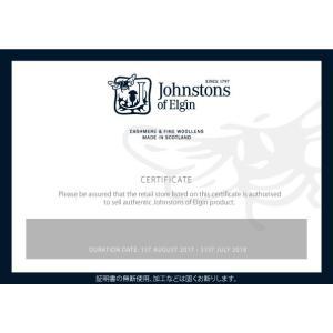 Johnstons【ジョンストンズ】大判カシミヤストール・マフラー WA000056 AU1796 Vertical Stripe ストライプ グレー|cinqessentiel|04