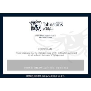 Johnstons【ジョンストンズ】マフラーWA1174 RU604600 Grey ライトカシミヤ ライトグレー cinqessentiel 04