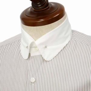 Maria Santangelo【マリアサンタンジェロ】ドレスシャツ BYRON PINS PIUM TWILL F333774 25BB  コットン ストライプ クレリック ブラウン×ホワイト|cinqueclassico