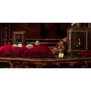 ARQUISTE【アーキスト】オーデパルファン オーデパルファム 香水 フレグランス 1301100 Fleur de Louis(フル―ル  ド ルイ) 100ml|cinqueunaltro|02