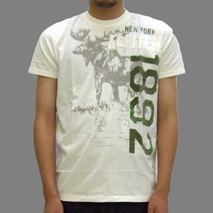 【SALE】アバクロンビー アンド フィッチ メンズ Ausable Chasm 65056 S/S Tシャツ ホワイト Abercrombie & Fitch Mens Ausable Chasm 65056 SS TEE White|cio
