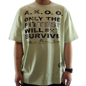 AKOO(A King Of Oneself) FIT VIVE S/S TーShirt CanaryGreen エーケーオーオー(ア キング オブ ワンセルフ) フィット バイブ S/S Tシャツ キャナリーグリーン|cio