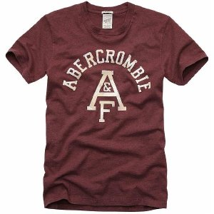 アバクロンビー アンド フィッチ(アバクロ) ビッグスライド マウンテン 2039H S/S Tシャツ バーガンディー Abercrombie&Fitch Big Slide Mountain S/S TEE|cio