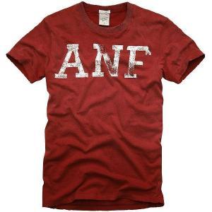 アバクロンビー アンド フィッチ(アバクロ) ハリケーン マウンテン 2041H S/S Tシャツ レッド Abercrombie&Fitch Hurricane Mountain S/S TEE Red|cio