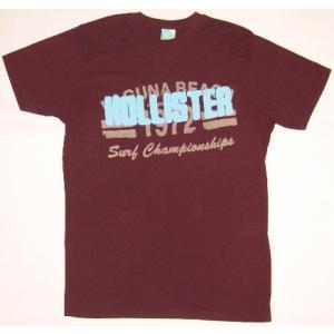 HOLLISTER S/S TEE Purple ホリスター S/S Tシャツ パープル|cio