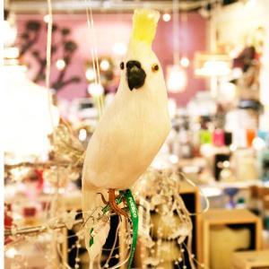 ◆商品番号:102078、◆サイズ(全長):250mm、◆素材:羽根(Duck,Goose,Chic...