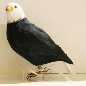 ◆商品番号:120072、◆サイズ(全長):230mm、◆素材:羽根(Duck,Goose,Chic...