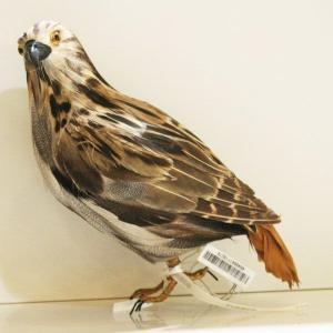 ◆商品番号:117072、◆サイズ(全長):350mm、◆素材:羽根(Duck,Goose,Chic...