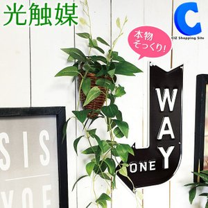 フェイクグリーン 観葉植物 光触媒 人工観葉植物 クレマチス 壁掛け 498758D|ciz