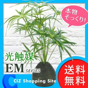 フェイクグリーン 光触媒 観葉植物 大型 おしゃれ インテリア サイプレス|ciz